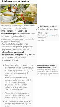 Sinusitis Vahos de Menta y Eucalipto Paranasal Sinuses, Medicinal Plants, Pots, Mint, Homemade, Health