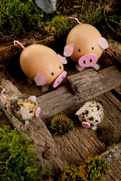cute pigs out of egg shells diy