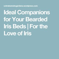 Ideal Companions for Your Bearded Iris Beds | For the Love of Iris