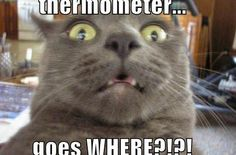 Thermometer, goes where ?