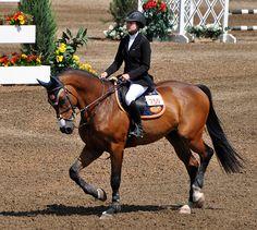 Tatiana Dzavik- Ogilvy Equestrian, Equestrian Style, Horse, Horse Show, Half Pad, Saddle Pad, Tack, Saddle, Show Jumping, Eventing, Cross Country, Equitation, Eq Fashion, Dressage
