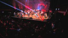 Feest! (voor iedereen) - Kapitein Winokio's Berenconcert januari 2013 in AB