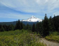 Mt. Hood Scenic Byway is Oregon's quintessential road trip