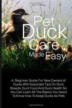 """""""Pet Duck Care Made Easy: A Beginner Guide For"""" Maybe one day! :)"""