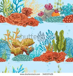 Sea Plants Stock Photos, Images, & Pictures | Shutterstock