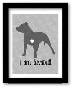 Hey, I found this really awesome Etsy listing at https://www.etsy.com/listing/161725564/pitbull-art-print-i-am-luvabull-gray