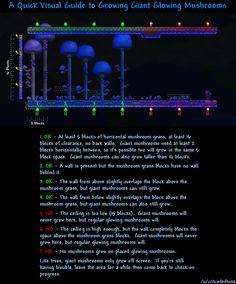 Glowing mushroom guide