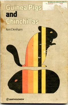 Great vintage color-block graphics. Simple & bold, a simultaneous minimalist/maximalist approach the 1970s mastered. Guinea Pigs and Chinchillas #coolcovers #books #art