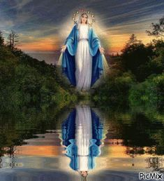She was here outside my bedroom window! Religious Pictures, Jesus Pictures, Religious Icons, Jesus Christ Images, Jesus Art, Catholic Religion, Catholic Saints, Blessed Mother Mary, Blessed Virgin Mary