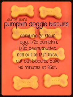 Most dogs love pumpk