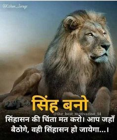 Learn the identity of real life not from humans but from lions Hindi Quotes Images, Inspirational Quotes In Hindi, Motivational Picture Quotes, Life Quotes Pictures, Epic Quotes, Badass Quotes, Amazing Quotes, True Quotes, Good Thoughts Quotes