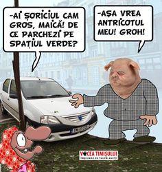 """NESIMȚIRE crasă! Angajații ITM Timiș """"calcă"""" pe fondurile europene și distrug spațiile verzi"""