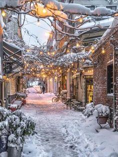 ideas for nature winter wonderland snow scenes Winter Szenen, Winter Magic, Winter Time, Winter Season, Winter Walk, Winter Months, Beautiful World, Beautiful Places, Wonderful Places