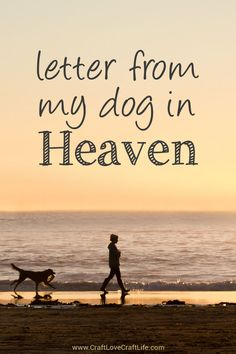 Letter from Heaven (Dog) Grief Support Resource Library Dog Grief, Pet Loss Grief, Loss Of Dog, Losing A Dog Quotes, Losing A Pet, Quotes About Dogs Passing, Dog Loss Quotes, Dog Qoutes, Animales