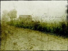 Jamie Heiden / Center of the Universe... ♥♥  Beautiful textured photo art ... very taken with this artist's work!