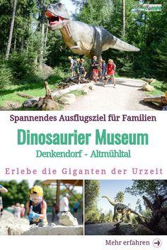 Das Dinosaurier Museum Altmühltal ist eines der spannendsten Ausflugsziele für Familien, Schulklassen und alle, die an der Entstehung unseres Planeten interessiert sind und diese hautnah erleben möchten. Auf zu den Dinos! #ausflugmitkindern #ausflugaltmühltal #altmühltalmitkindern #dinosaurier #dinos #dinomuseum #ausflugszielfürfamilienbayern #ausflugszielmitkindernbayern #ausflugspannend #museumkinder #ausflugschulklasse #urzeit Dino Museum, Cafe Racing, Twin Babies, Dubai, Travel Tips, Road Trip, To Go, Places To Visit, Germany
