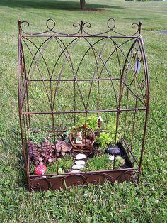 Birdcage Fairy Garden? LOVE it! Luv2Click via Flickr #fairy #garden #miniature #birdcage