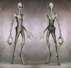 Alien One concept- The greys by ~The4thPredator on deviantART