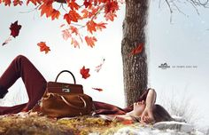 Hermès presents its Fall-Winter 2012 institutional campaign shot by Nathaniel Goldberg