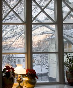 Window into winter, Sweden. Photo Marita Toftgard