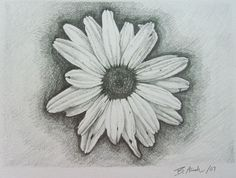 White Daisy Flower Tattoo Design