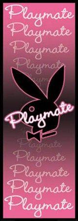 Sara Jean Underwood Blonde Playboy Playmate Centerfold