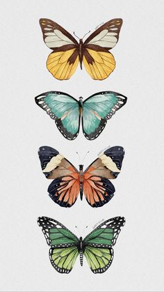 Butterfly Wallpaper Iphone, Iphone Background Wallpaper, Aesthetic Pastel Wallpaper, Aesthetic Wallpapers, Butterfly Art, Butterflies, Pattern Wallpaper, Wall Collage, Painting Inspiration