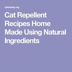 Cat Repellent Recipes Home Made Using Natural Ingredients