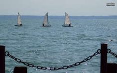 vitorlás, balaton, nyár, magyarország Outdoor Furniture, Outdoor Decor, Sailing Ships, Hammock, Boat, Dinghy, Boats, Hammocks, Hammock Bed