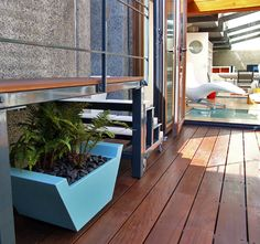 Turquoise planter with fern on Ipe decking on roof terrace in Barbican