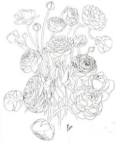 Drawing for Kristine's half sleeve... I would just like one simple blooming bud that I can cover up with my hair... Thoughts?