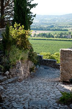 Vaucluse, Luberon, Provence...absolutely stunning..was there on a cycling holiday and loved, loved it!