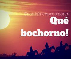 ¡Qué bochorno! Spanish expressions Agualivar Spanish School