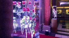 Dîner Musical, Tonhalle Zurich by aroma.ch