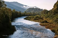 Iza River, Transylvania   Photo Kalmar Zoltan
