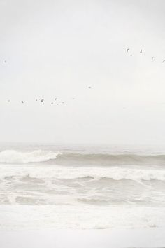 SERENITY - Pale gray sky, ocean waves, coast, salt water / creative spaces