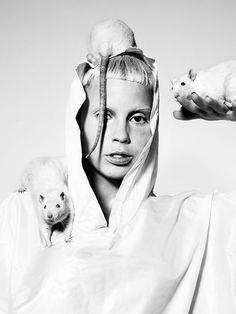 BRYAN ADAMS PHOTOGRAPHY Die Antwoord / Zoo