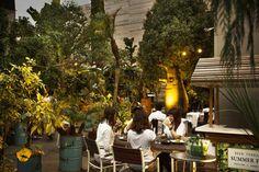今年のテーマは「世界にひとつだけの森」。代々木VILLAGEのビアテラスがオープン!