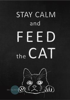 Cat print. Cat lover chalkboard art print in monochrome. Cat printable poster