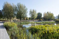 Martin Luther King Park by Atelier Jacqueline Osty & associes «  Landscape Architecture Works | Landezine