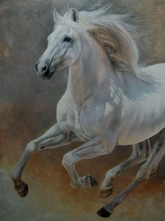 Gadjal Barbe Stallion , oil in canvas. Carolle Beaudry Art Équin : Equestrian Art , Canada ....