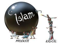 Moderate vs radical