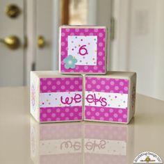 Doodlebug Design Inc Blog: Sugar Shoppe: Sweet Baby Blog Gift Idea