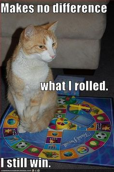 1000 images about board game humor on pinterest board