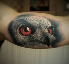Realistic Owl With Piercing Eyes