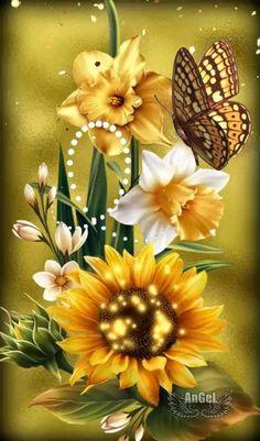 Beautiful Night Images, Beautiful Gif, Beautiful Rose Flowers, Beautiful Butterflies, Galaxy Wallpaper, Butterfly, Nature, Plants, Gifs
