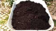 Composting 101: A Guide for The Newbie Gardener - NowWithPurpose Garden Soil, Gardening, Composting At Home, Reap The Benefits, Yard Waste, Ways To Recycle, Green Materials, Plant Growth, Patterns In Nature