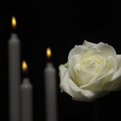 Funeral poems are a traditional part of any ceremony. Need an inspiration for someone's ceremony? We have collected over 20 beautiful funeral poems you can use. Short Condolence Message, Condolence Messages, Average Cost Of Cremation, Bougie Rose, Funeral Poems, Losing A Loved One, Good Marriage, Amazing Flowers, How To Find Out