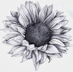 Sunflower tattoo I love this. one of the most beautiful sunflower tattoos I have. - Sunflower tattoo I love this. one of the most beautiful sunflower tattoos I have seen almost makes - Sunflower Tattoo Sleeve, Sunflower Tattoo Shoulder, Sunflower Tattoo Small, Sunflower Drawing, Sunflower Tattoos, Sunflower Tattoo Design, White Sunflower, Sunflower Sketches, Sunflower Images