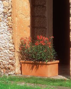 Jardinera Siepi - Siepi plant box  Medidas - Size cm.80 (cm.80 x 39 x 35 h.) lt 76  http://ift.tt/1NHCpzN  #decoracion #decoração#casayjardin#casa #homeandgarden#home#decor#deco #decoration#instadecor#jardin#florist #floristeria#pottery#pot#macetas #housedecor#florista#plantas#plants #plant#floreria#plantbox #jardinera#jardineria #homedesign #myhome #gardencenter #garden #vivero